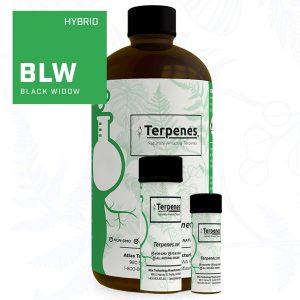 Black Widow Terpenes