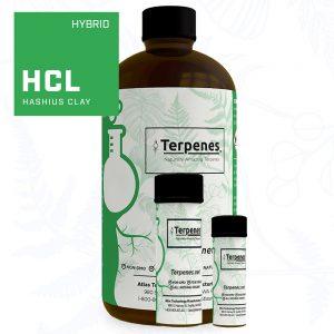 Hashius Clay Terpenes